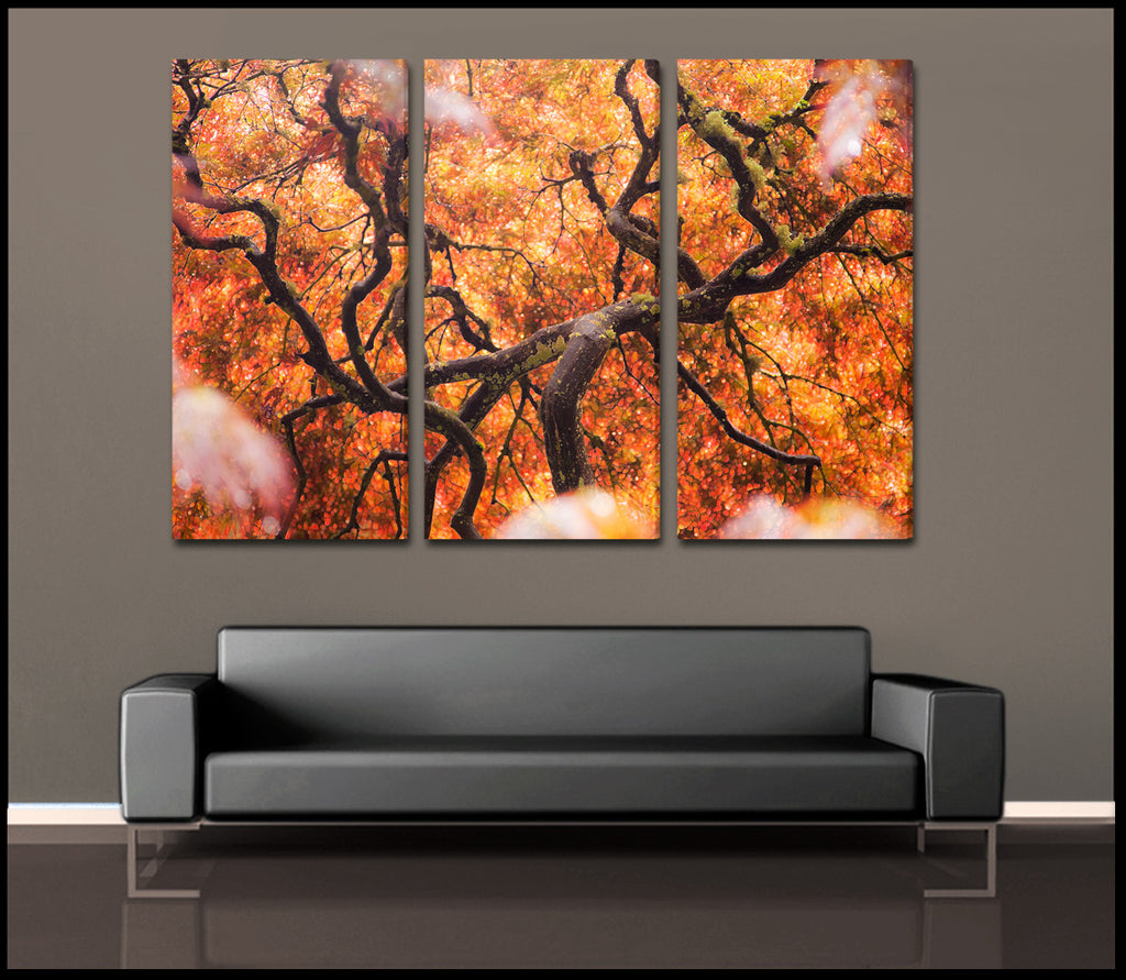 Tree of color abstract nature 3 piece fine art canvas for Three piece wall art