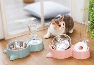 Cat Food and Drinking Water Bowl
