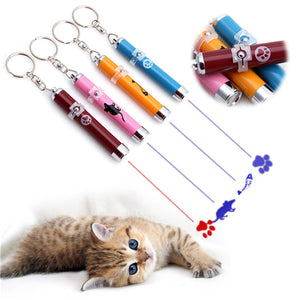 LED Laser Pointer Pen - Cat Toy With Bright Animation
