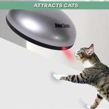 Load image into Gallery viewer, Radar Interactive Vacuum Cleaning Cat Teaser