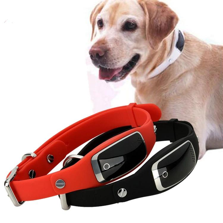Pet GPS Dog Collar