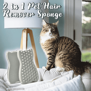 2 in 1 Pet Hair Remover Sponge
