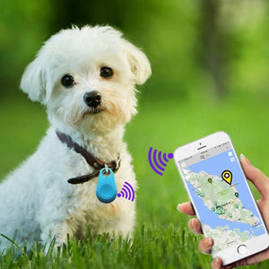 https://cdn.shopify.com/s/files/1/0057/6936/3538/files/GPS_Pet_Tracker.mp4?86338