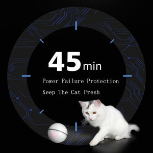 Automatic Walk Interactive Safe Interesting Toys For Pets