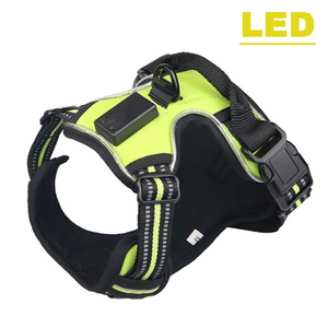 Nylon Flashing Light Safety Dog LED Harness