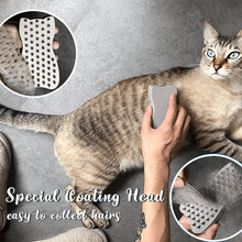 Load image into Gallery viewer, 2 in 1 Pet Hair Remover Sponge