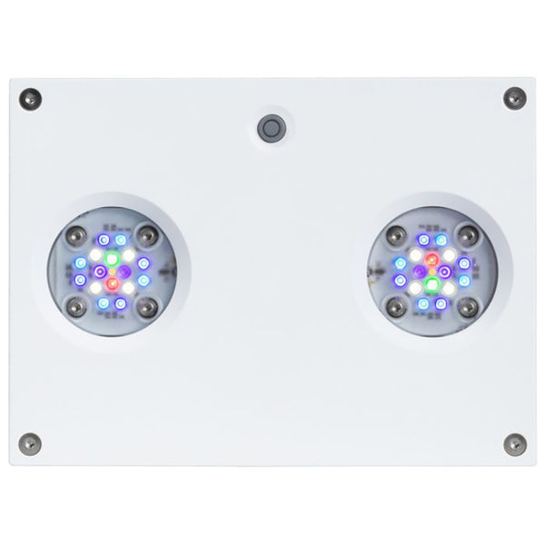 Hydra 32 HD LED Reef Light - White Body