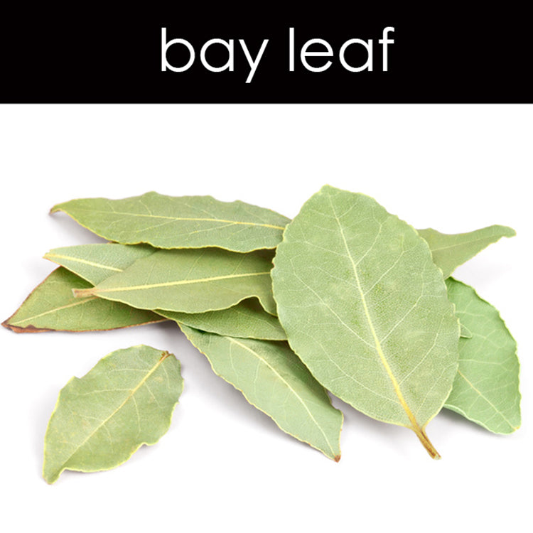 Bay Leaf Reed Diffuser Refill