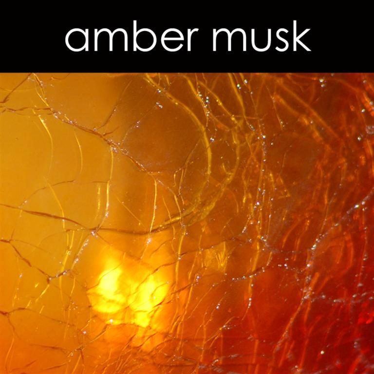 Amber Musk Reed Diffuser Refill