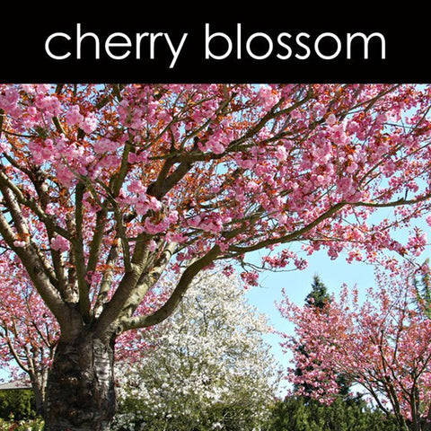 Cherry Blossom Reed Diffuser Refill