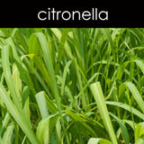 Citronella Lemon Candle