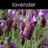 Lavender Reed Diffuser Refill