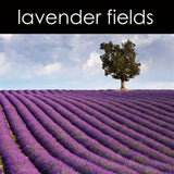 Lavender Fields Fragrance Oil