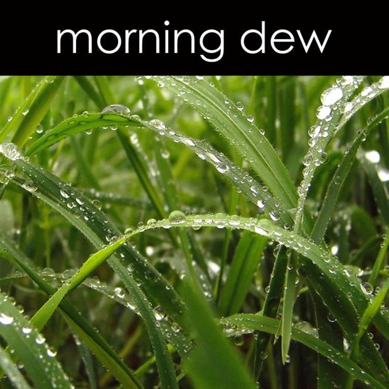 Morning Dew Aromatic Mist