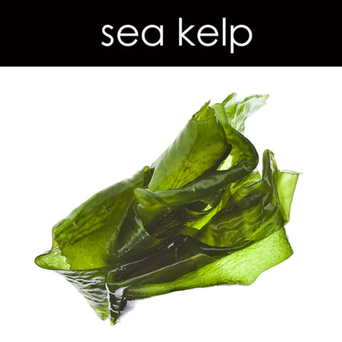 Sea Kelp Tart