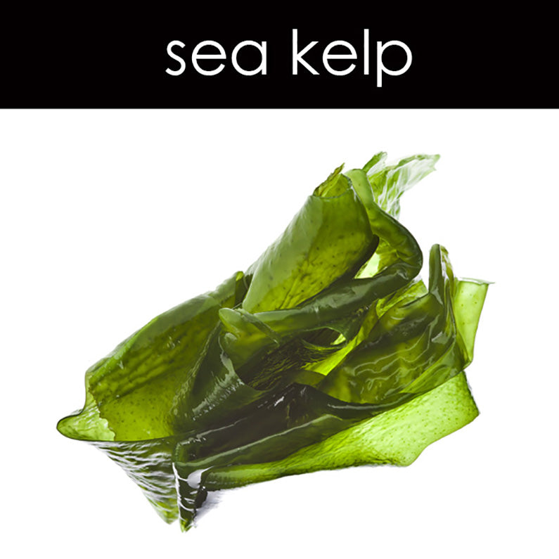 Sea Kelp Fragrance Oil
