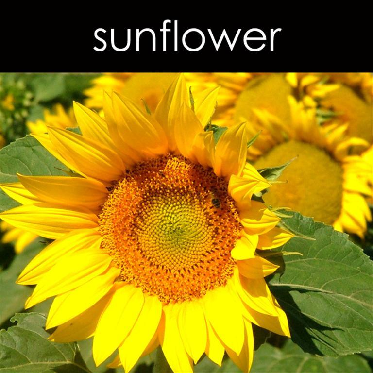 Sunflower Candle