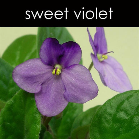 Sweet Violet Reed Diffuser Refill