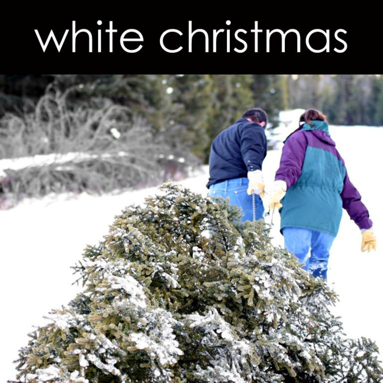 White Christmas Lotion