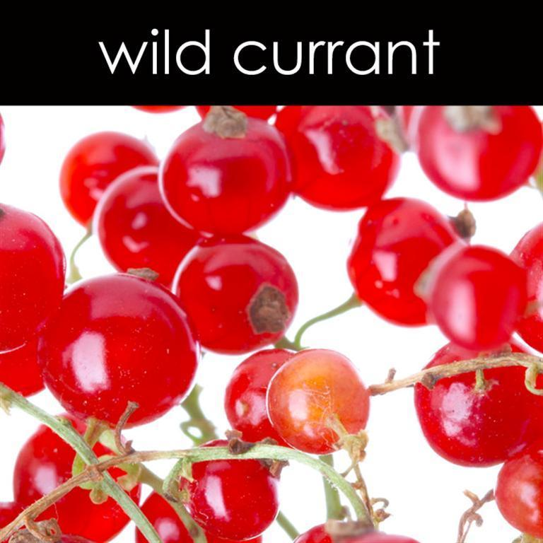 Wild Currant Fragrance Oil