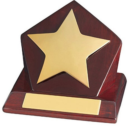 Rising Star Wood Metal Award Plaque