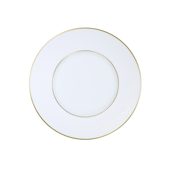 MOONSCAPE DINNER PLATE