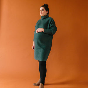 Sara Turtleneck Dress