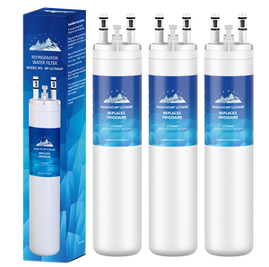 MountainFlow ULTRAWF, 242017801 Water Filter & 46-9999 (3 PCS)