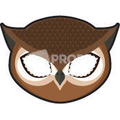 Load image into Gallery viewer, Owl Mask 2