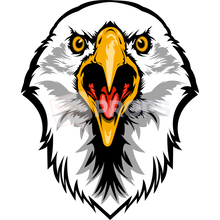 Load image into Gallery viewer, Eagle Head 2