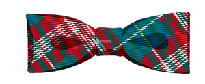 Red & Teal Plaid Bowtie