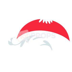 Santa Hat with Hair