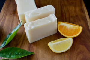 Citrus Soap and Shampoo Bar