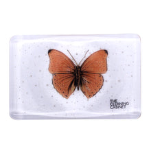Load image into Gallery viewer, Fused Glass Soap Dish, the-cleaning-cabinet