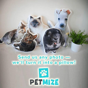 turn your pet into a custom pet pillow