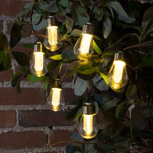 LitezAll LED Edison Bulb 6 Piece String Lights Decorating Suggestion-19