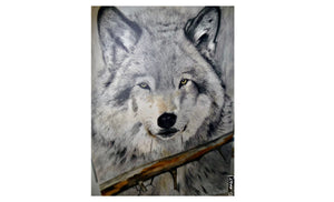 Gray Wolf - [product_type - Marj Kettlewell - Aqua Terre Artisans