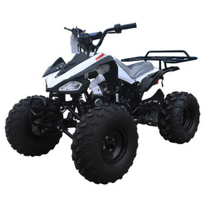 Cheetah G125 Youth ATV 125cc OUTPUT - Family Powersport