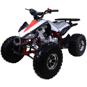 NEW Cheetah XR Youth ATV 125cc - Family Powersport