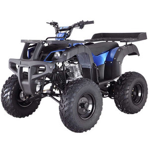 Rhino 250cc Adult ATV - Family Powersport