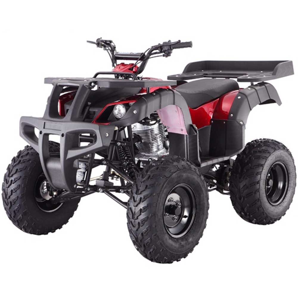 Rhino 250cc Adult ATV SOLD OUT - Family Powersport