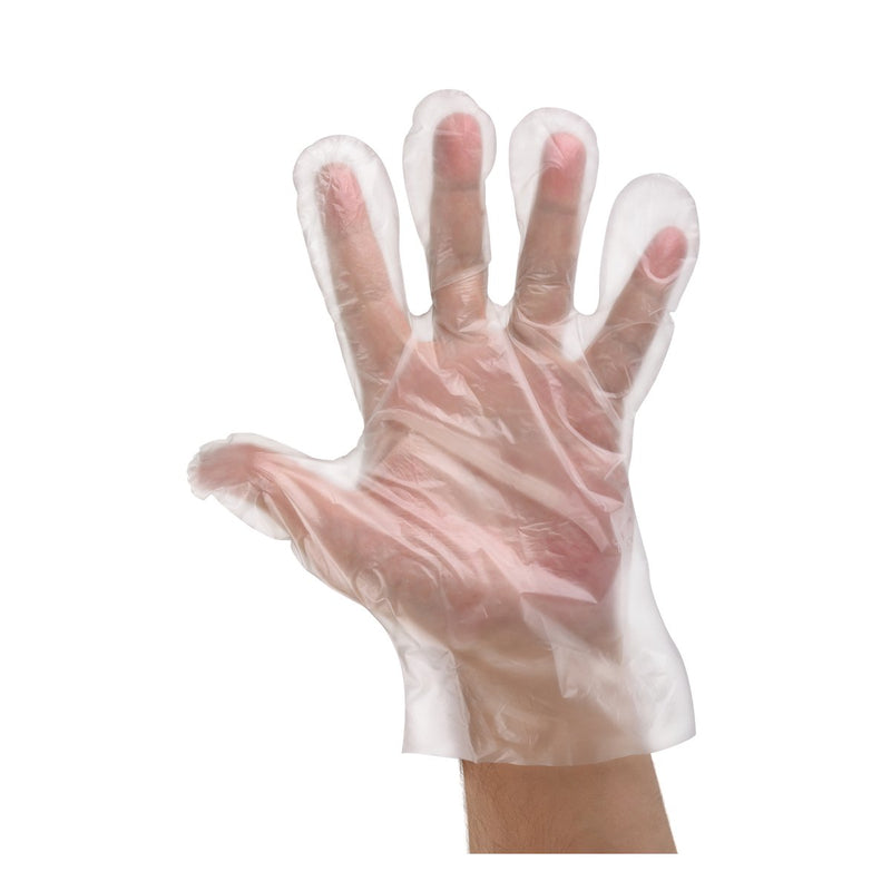 BNG8884 Polyethylene Clear Gloves Powder-Free - Large Chemworks Hospitality
