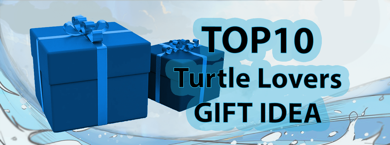 Turtle Lovers Gift Ideas