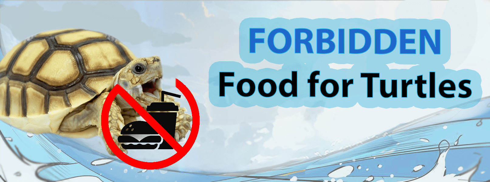Forbidden Food for Turtle Article | Turtle Store