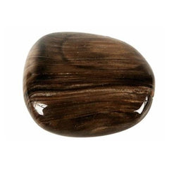 Fossiled wood Gemstone