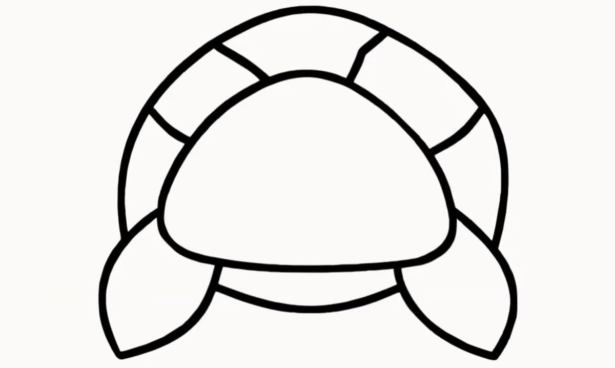 Step6 - how to draw a cute turtle