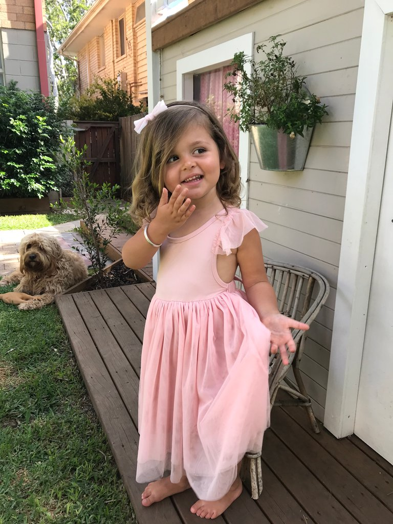 Sophia Dress -Dusty Pink