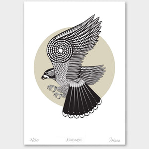 Bird Art Prints Art Print Black Frame with matt Karearea Frame