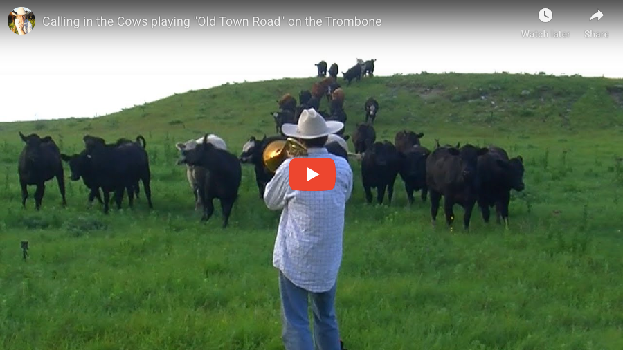 "Calling in the Cows playing ""Old Town Road"" on the Trombone"