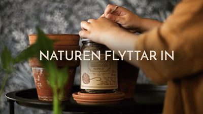 Naturen flyttar in